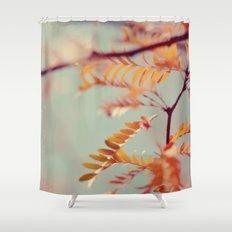 Autumn #2 Shower Curtain