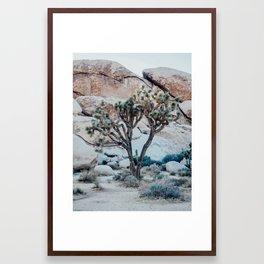 Lonely Tree Joshua Tree California Framed Art Print