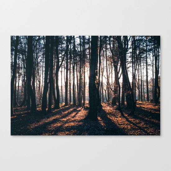 We're All Wild Canvas Print