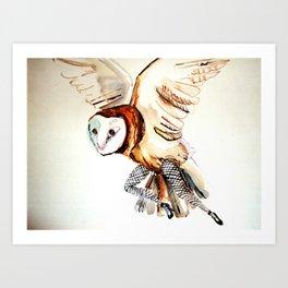 Owl Legs Art Print