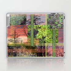 Trees & Moss Laptop & iPad Skin