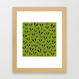 Milo The Boston Terrier #2 Framed Art Print