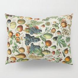 Fruits Vintage Scientific Illustration French Language Encyclopedia Lithographs Educational Pillow Sham