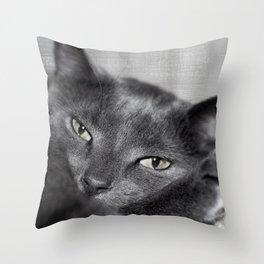 Finlay Throw Pillow