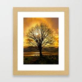 Tree of Fire Framed Art Print