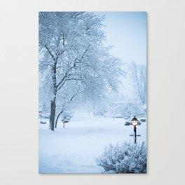 Calm Winter Morning Canvas Print