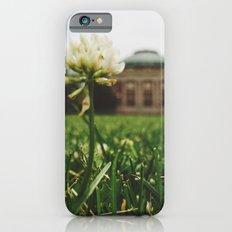 Summer Sunshine iPhone 6s Slim Case