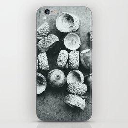 Acorns iPhone Skin