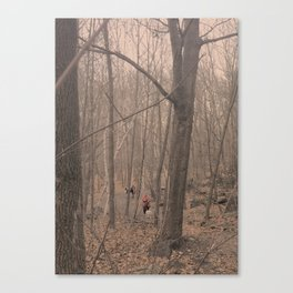 Red forrest Canvas Print