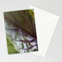 Basil Stationery Cards