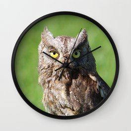 Owl_20180213_by_JAMFoto Wall Clock