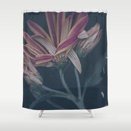 Ripe Shower Curtain