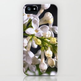 Raindrops on white lilacs iPhone Case