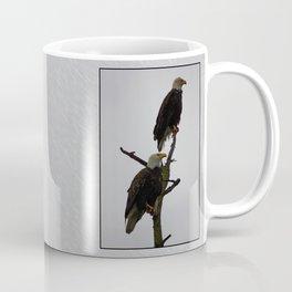 bald eagle pair in the rain Coffee Mug