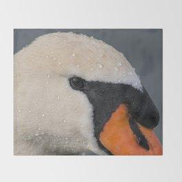 Mute Swan in Winter - CloseUp Throw Blanket