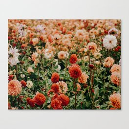 Vintage Flower Garden (Color) Canvas Print