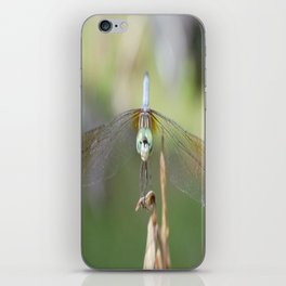 Dragon fly close up iPhone Skin