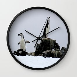 Chinstrap Penguins Wall Clock
