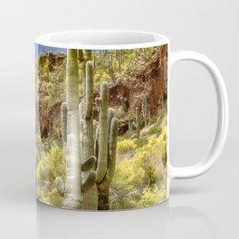 Tonto National Monument, AZ Coffee Mug