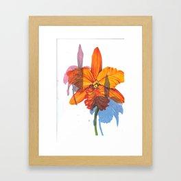 Orchids. Framed Art Print