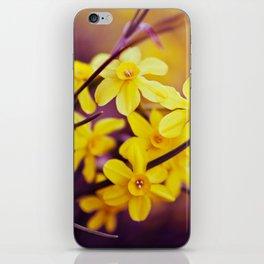 Like A Dream II iPhone Skin