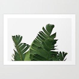 Minimal Banana Leaves Art Print