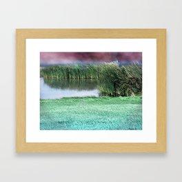 Marshes Bokeh Framed Art Print