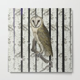 An owl look out Metal Print