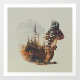 Norwegian Woods: The Squirrel Art Print