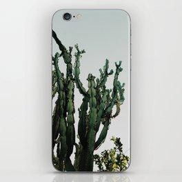 Cactus Dreams iPhone Skin