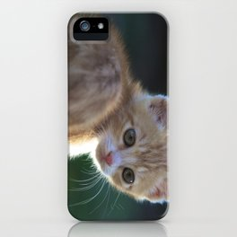 Gatto Rosso - Red Cat iPhone Case