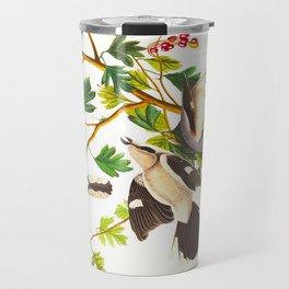 Great Cinereous Shrike, or Butcher Bird Travel Mug