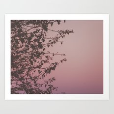 Sunset Stories Art Print