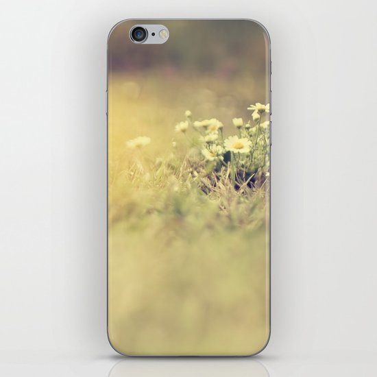 buttercup daisies iPhone & iPod Skin