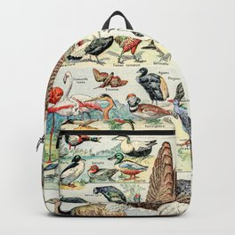 Wild Birds // Oiseaux by Adolphe Millot XL 19th Century Science Textbook Diagram Artwork Backpack