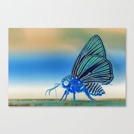 Azul Mothra Canvas Print