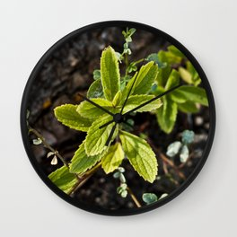 Root Sprouts Wall Clock