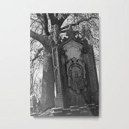 At rest Metal Print