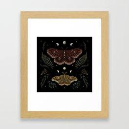 Saturnia Pavonia Framed Art Print