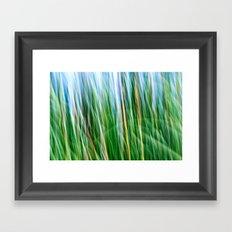 Breezy Framed Art Print