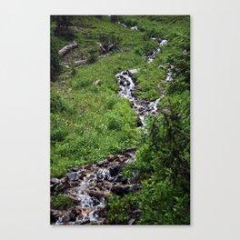 Rocky mountain 007 Canvas Print