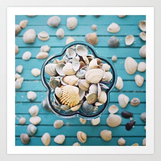 Sea-shells. Art Print
