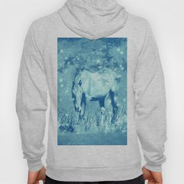 Horse and faerie lights Hoody