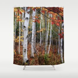 Acadia Fall color Shower Curtain