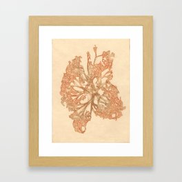 butterfly starfish Framed Art Print