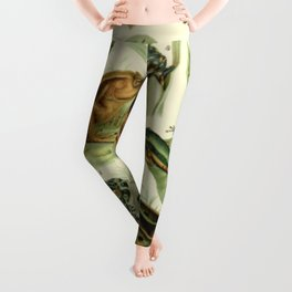 Frogs And Toads Leggings