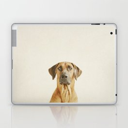 Hello my name is Hector Laptop & iPad Skin