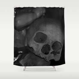 Sedlec IV Shower Curtain