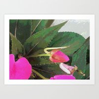 hot pink Art Prints featuring Hot Pink by Glenn Designs