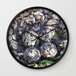 Killdeer eggs in nest Wall Clock